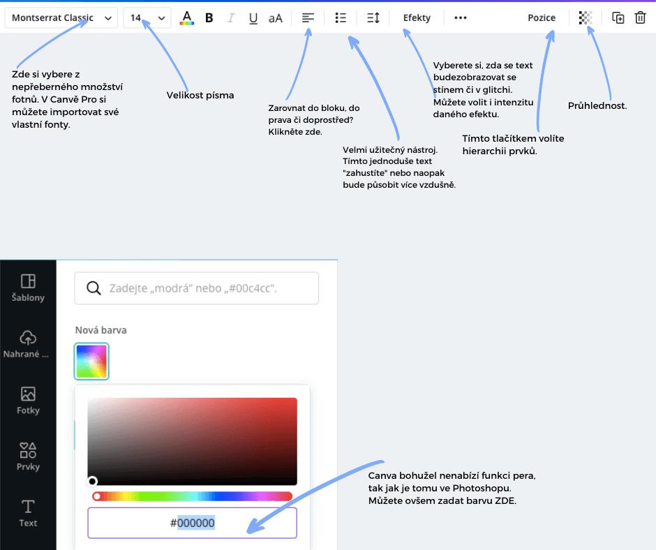 grafika canva 2